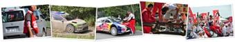 """Rally Japan2010"" の表示"